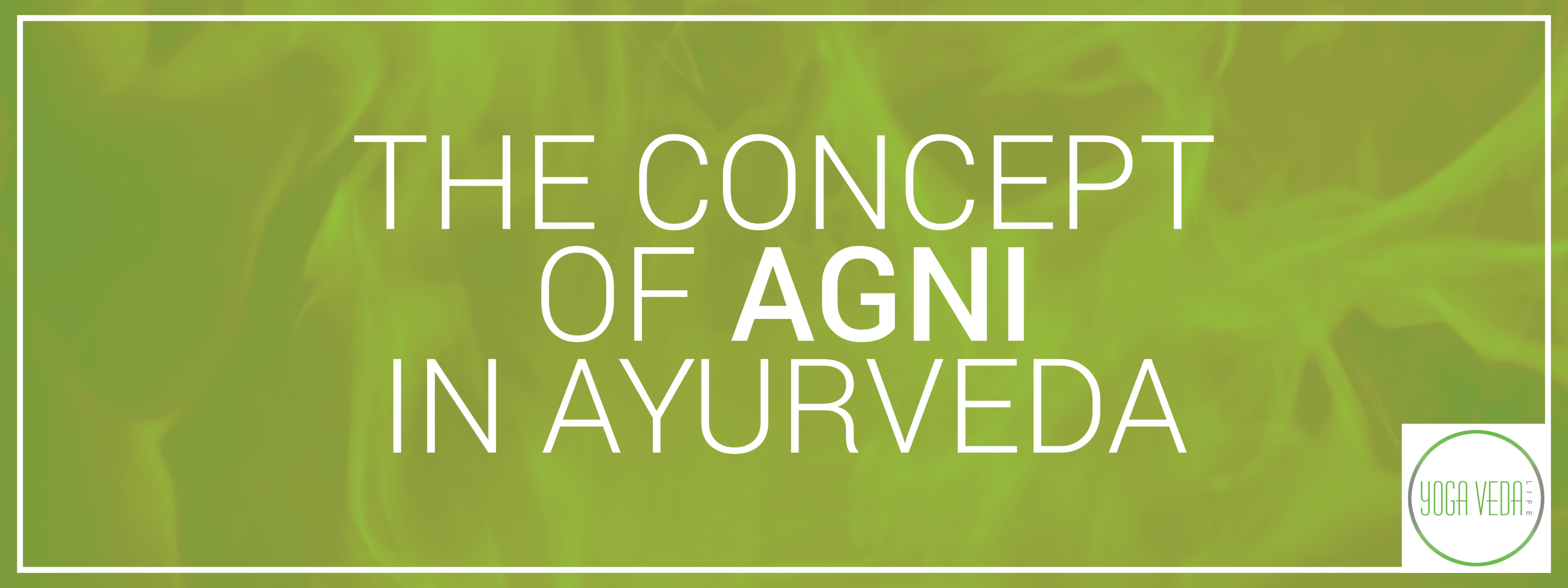 The Concept of Agni in Ayurveda - Blog post(1)